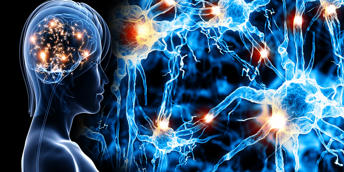 Phase 1 Trial Begins Evaluating Safety of Focused Ultrasound in Alzheimer's Patients