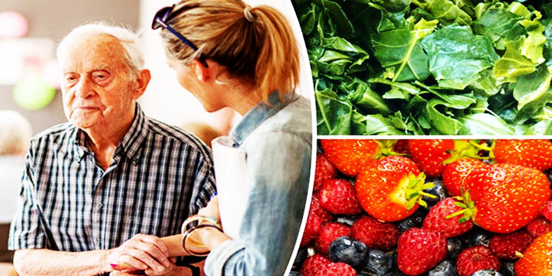 Diet that could Prevent Alzheimer's disease